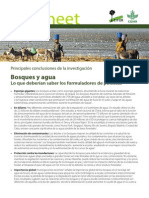 Bosques y agua
