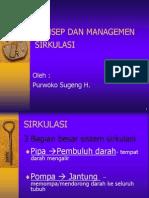 Circulation Manajemen