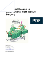 Handout Advanced Course in Soft Tissue Surgery 2011