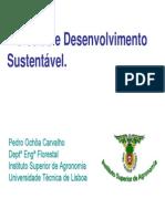 SFMSilviculturaAI