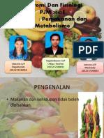 11.Pemakanan Dan Metabolisme