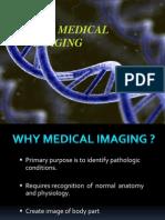 167250734 Medical Imaging