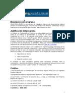 Manual Construanalisis