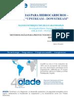 Metodología Proyectos en Hidrocarburos