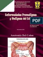 Seminario Enf. Premalignas y Malignas de Colon 2003
