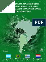 Declaração Mercosul