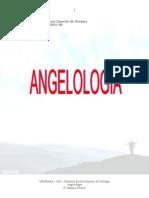 (12) Doutrina Dos Anjos (Angelologia)