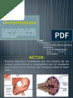 Quimotripsinaa