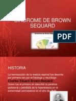 Sx de Brown Sequard