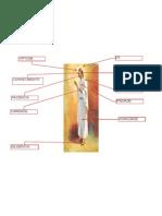 Atributos de Cristo Modelo 2