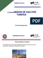 Flujo en Gasoductos