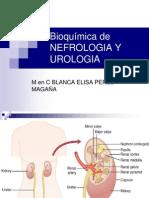 Clase Bioquímica Nefrologia y Uro 2013 (1)