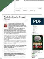 Teknik Membesarkan Bonggol Adenium _ Info _ Kabar AgroMedia