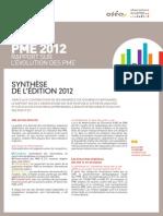 synthese-du-rapport-2012-sur-l-evolution-des-pme.pdf