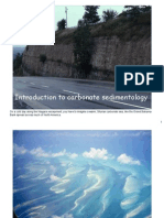 Introduction to Carbonate Sedimentology