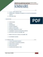 rapport audit marchés.pdf