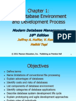 computer system management database devlopment process