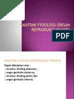 Anatomi Fisiologi Organ Reproduksi(1)