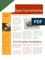 Alerta Fitosanitaria Huanglongbing1