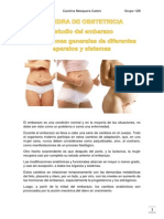 Modificaciones Del Organismo Materno Durante La Gestación