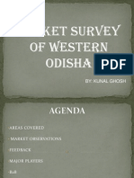 Report on Western Odisha Market
