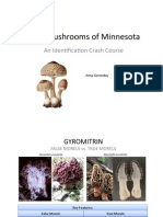Mushroom identification in the US