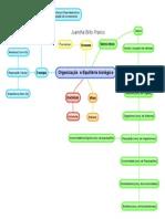 Organização e Equilíbrio Biológico