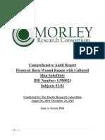 IDE-G980023_Report_V7_12 15 10 (2) Second Morley Audit