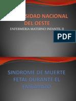 3-06muerte Fetal Intrautero (1)