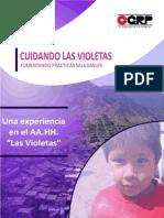 Ejemplo de Proyecto Social