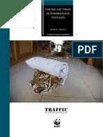 Traffic Species Mammals61