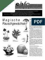Drogen Info- Halluzinogene Und Zauberpilze