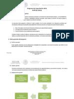 06_Programa_de_Capacitacion_2014_Perfil_de_Policias.pdf