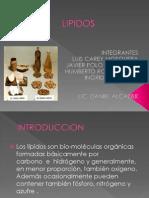 LIPIDOS_2_