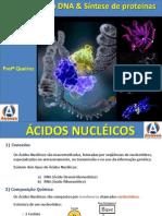 Aula Acidos Nucleicos - Duplicacao Do DNA e Sintese Proteica201092014