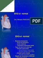 Lp 1 EKG normal