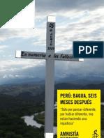 Informe Bagua Amnistia Internacional