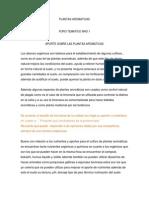 Plantas Aromaticas- Foro Tematico Nro1