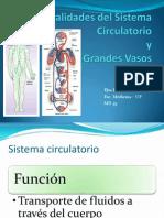 CIA2011 Generalidades Del Sistema Circulatorio (1)