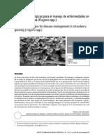 Estrategias Biológicas Para El Manejo de Enfermedades en El Cultivo de Fresa