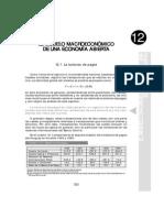 Cap 12 pdf