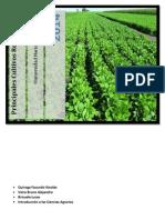 Principales Cultivos de Argentina y La Region