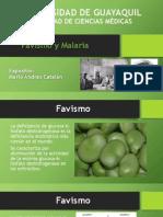 Favismo Y Malaria