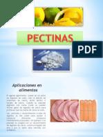 Pectinas y Alginatos