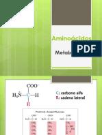 Metabolismo Aa 2013-1