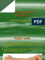 Region Axilar