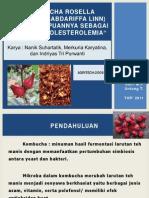 Kombucha Rosella (Hibiscus Sabdariffa Linn)