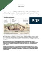 RELLENOSANITARIO.docx