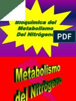 Bioquimica Del Metabolismo Del Nitrogeno
