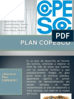 PLAN COPESCO (1).pptx